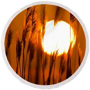 Fiery Grasses Round Beach Towel