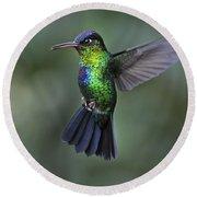 Fiery-throated Hummingbird..  Round Beach Towel