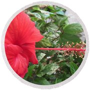 Fire And Ice Hibiscus Round Beach Towel