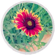Fire Daisy Round Beach Towel
