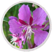 Fireweed 1 Round Beach Towel