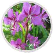 Fireweed 3 Round Beach Towel