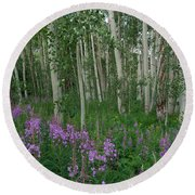 Fireweed And Aspen Round Beach Towel