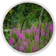Fireweed In The Irish Countryside Round Beach Towel