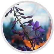 Fireweed Number Five Round Beach Towel