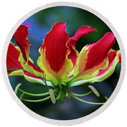 Flame Lily II Round Beach Towel by Larry Nieland