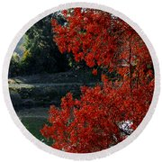Flame Red Tree Round Beach Towel by Susan Wiedmann