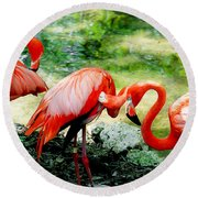 Flamingo Friends Round Beach Towel
