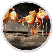 Flamingo Hangout Round Beach Towel