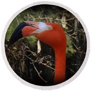 Flamingo Profile Round Beach Towel