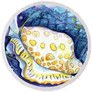 Flamingo Tongue Round Beach Towel