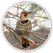 Flicker - Alabama State Bird - Attention Round Beach Towel