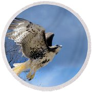 Flight Of The Red Tail Round Beach Towel