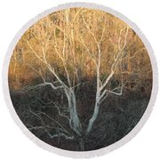 Round Beach Towel featuring the photograph Flint River 12 by Kim Pate