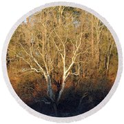 Round Beach Towel featuring the photograph Flint River 16 by Kim Pate