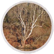 Round Beach Towel featuring the photograph Flint River 25 by Kim Pate