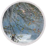 Round Beach Towel featuring the photograph Flint River 29 by Kim Pate