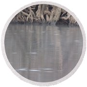 Round Beach Towel featuring the photograph Flint River 6 by Kim Pate