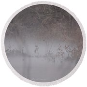 Round Beach Towel featuring the photograph Flint River 7 by Kim Pate