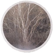 Round Beach Towel featuring the photograph Flint River 9 by Kim Pate