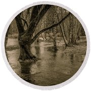 Flooded Tree Round Beach Towel