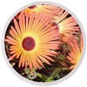 Round Beach Towel featuring the photograph Floral by Cathy Mahnke