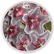 Floral Presence - Signed Round Beach Towel