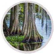Florida Cypress Trees Round Beach Towel