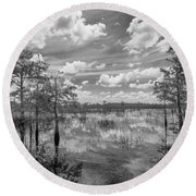 Florida Everglades 5210bw Round Beach Towel