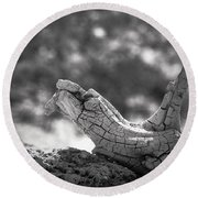 Round Beach Towel featuring the photograph Florida Keys Driftwood by Bradley R Youngberg
