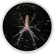 Insect Me Closely Round Beach Towel