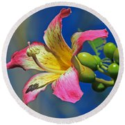 Floss Silk Bloom Round Beach Towel by Larry Nieland