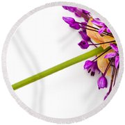 Flower At Rest Round Beach Towel