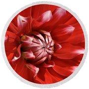 Flower- Dahlia-red-white Round Beach Towel
