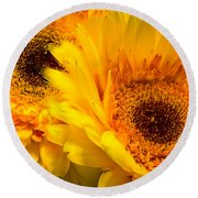 Round Beach Towel featuring the photograph Flower Eyes by Steven Santamour