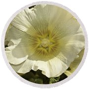 Flower Petals Of A White Flower Round Beach Towel