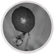 Round Beach Towel featuring the photograph Flower Unknown by Ron White