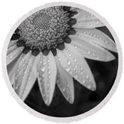 Flower Water Droplets Round Beach Towel by Ron White