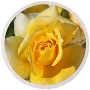 Flower-yellow Rose-delight Round Beach Towel by Joy Watson