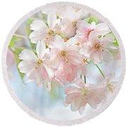 Flowering Cherry Tree Blossoms Round Beach Towel
