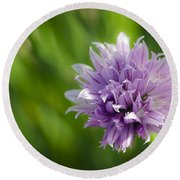 Flowering Chive Round Beach Towel by Dee Cresswell