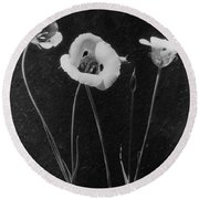 Flowers In Louise Beebe Wilder's Garden Round Beach Towel