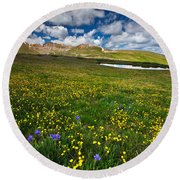 Flowers On The Divide Round Beach Towel