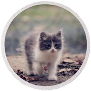 Fluffy Cuteness Round Beach Towel