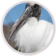 Fluffy Wood Stork Round Beach Towel by Carol Groenen