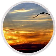 Round Beach Towel featuring the photograph Fly Free by Faith Williams