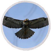Flying Free - Red-tailed Hawk Round Beach Towel