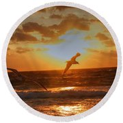 Round Beach Towel featuring the photograph Flying In The Sun by Dennis Baswell
