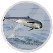 Flying Sideways Round Beach Towel