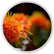 Focused Safflower Round Beach Towel